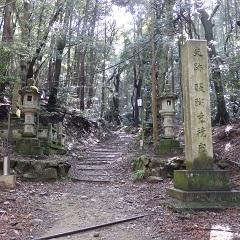 醍醐山から高塚山へ